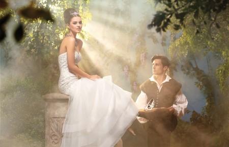 princess-cindarella-wedding-dress-decor-ideas